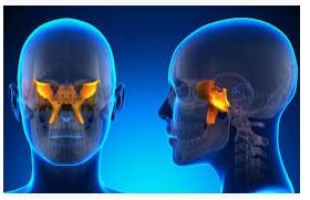 Neurocranial Restructuring
