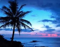 Hawaii_Meniere's_experience