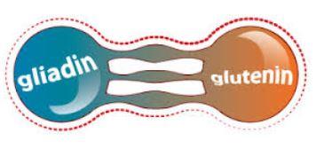 Gluten and Meniere's Disease