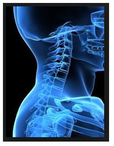 Meniere's disease - Cervical Spine and TMJs